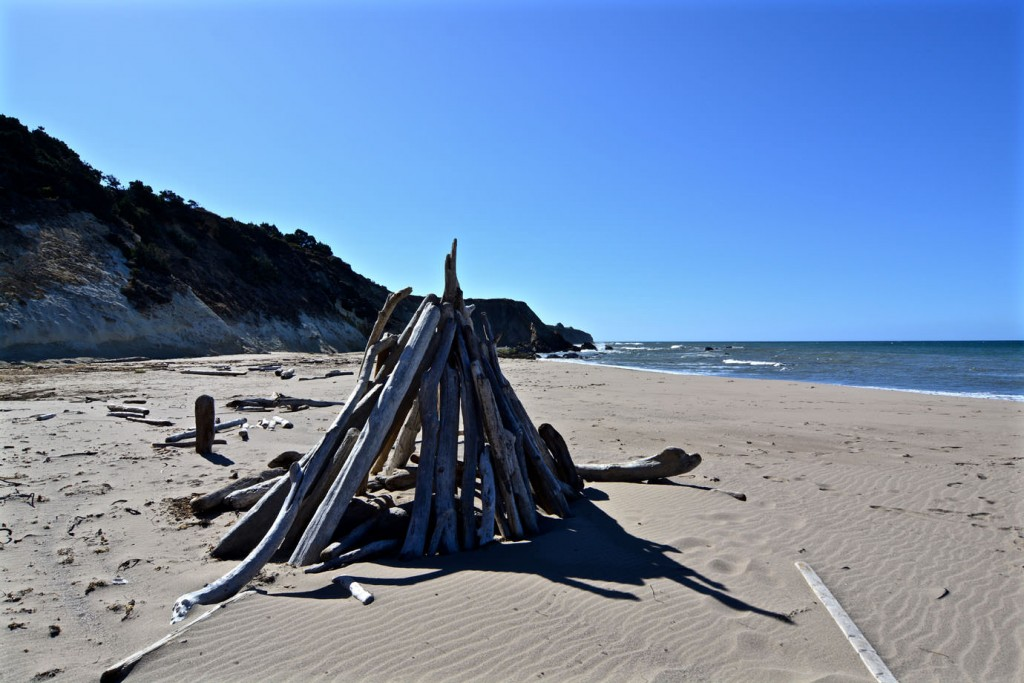Pile of driftwood