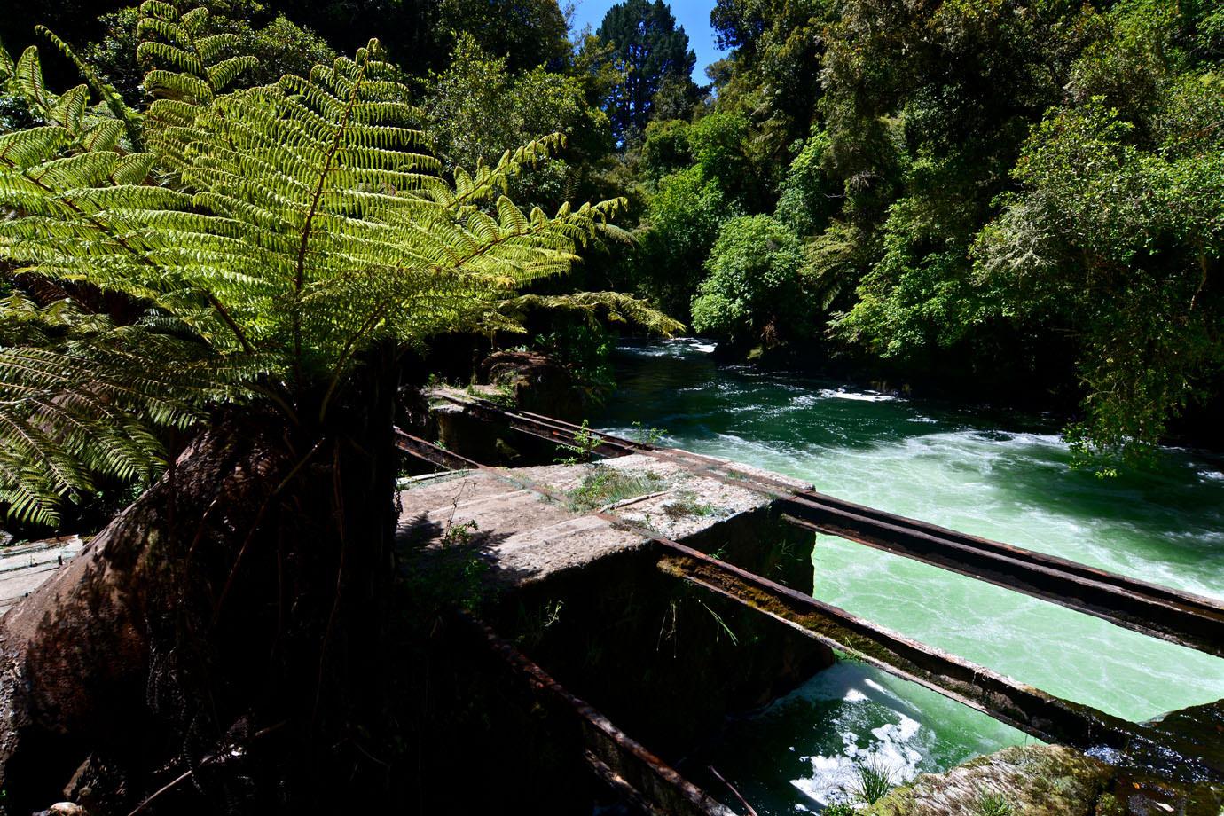 River Liana Nude Photos 35