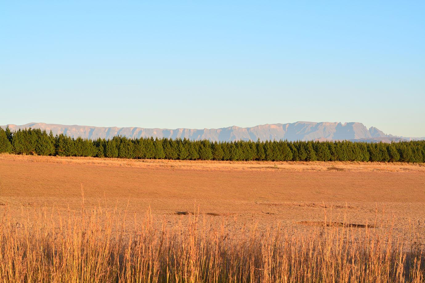 Drakensberg