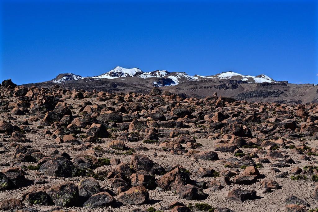 Reserva Nacional Salinas