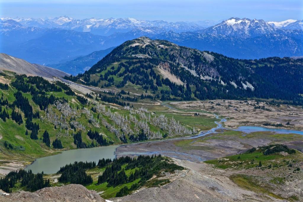 Panorama Ridge Trail
