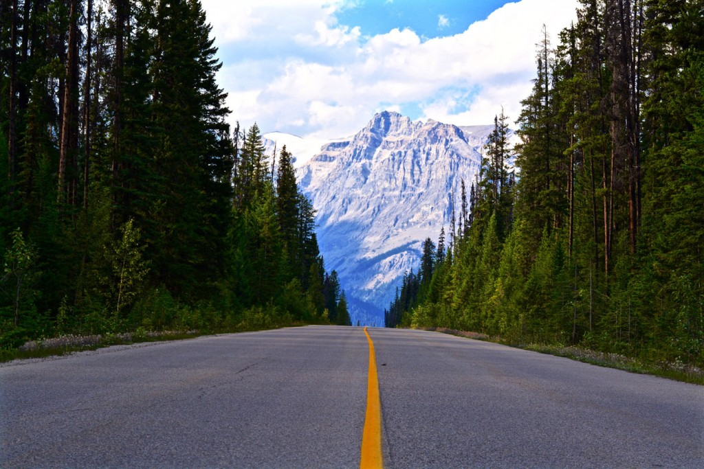 Road to Emerald Lake