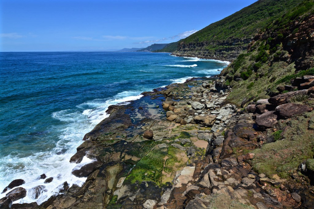 Coast at Royal National Park