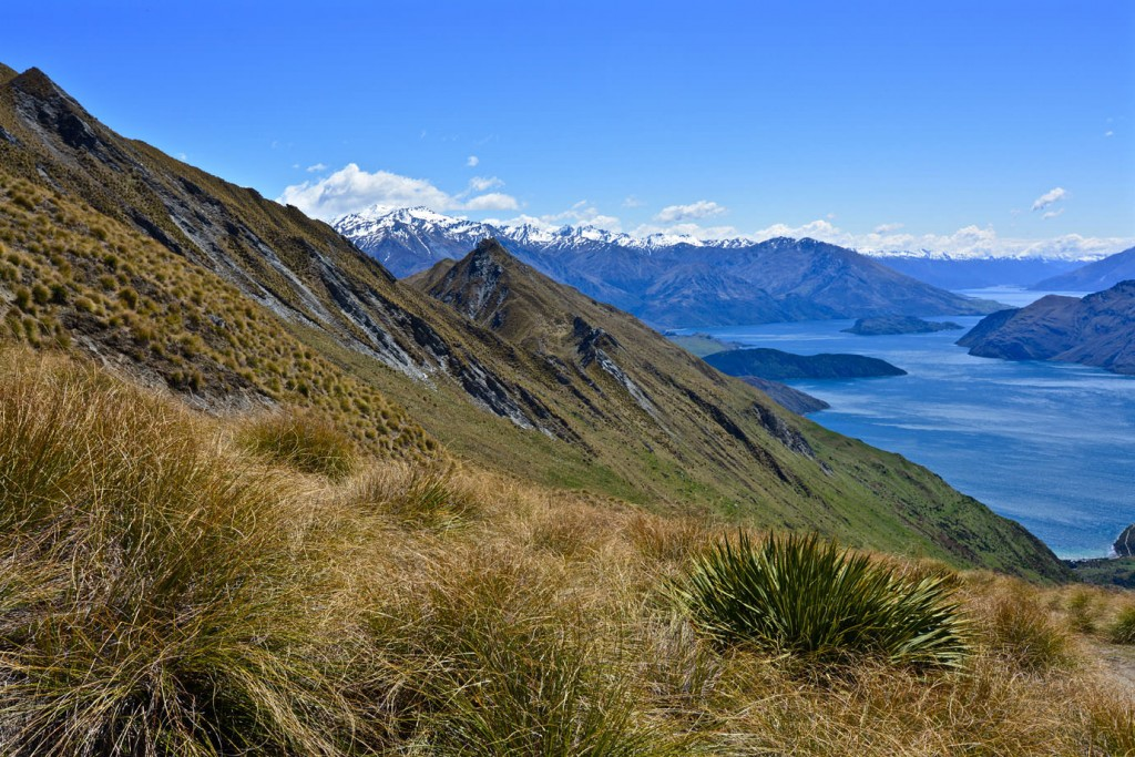 View at Lake Wanaka on the way to Roys Peak