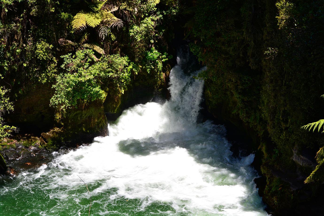 River Liana Nude Photos 37
