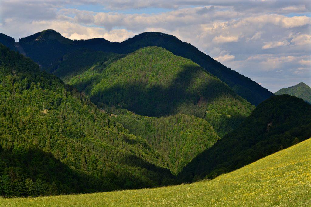 Lake Bohinj Hills