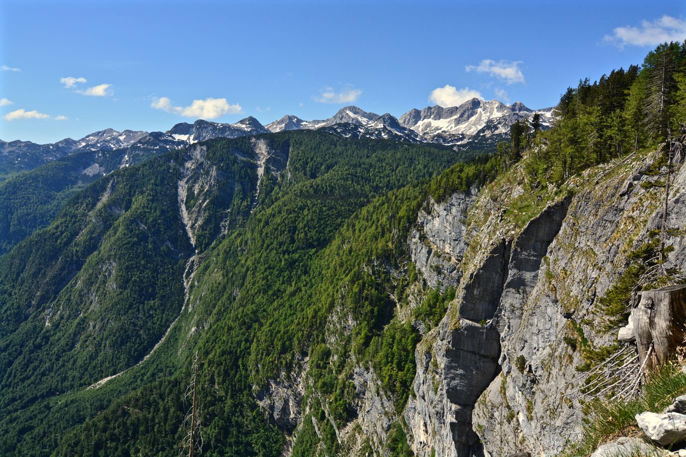 Lake Bled And Lake Bohinj Liana